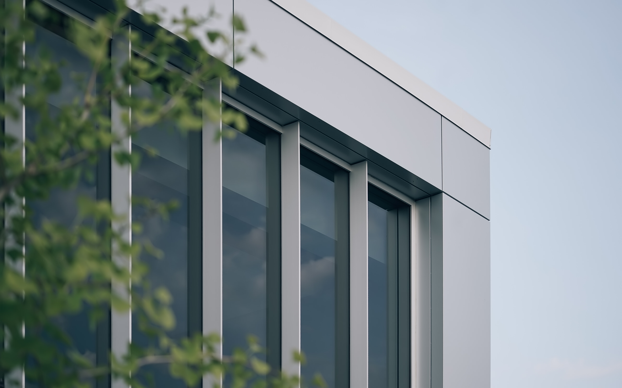Architectural Detail Photography shot of local School