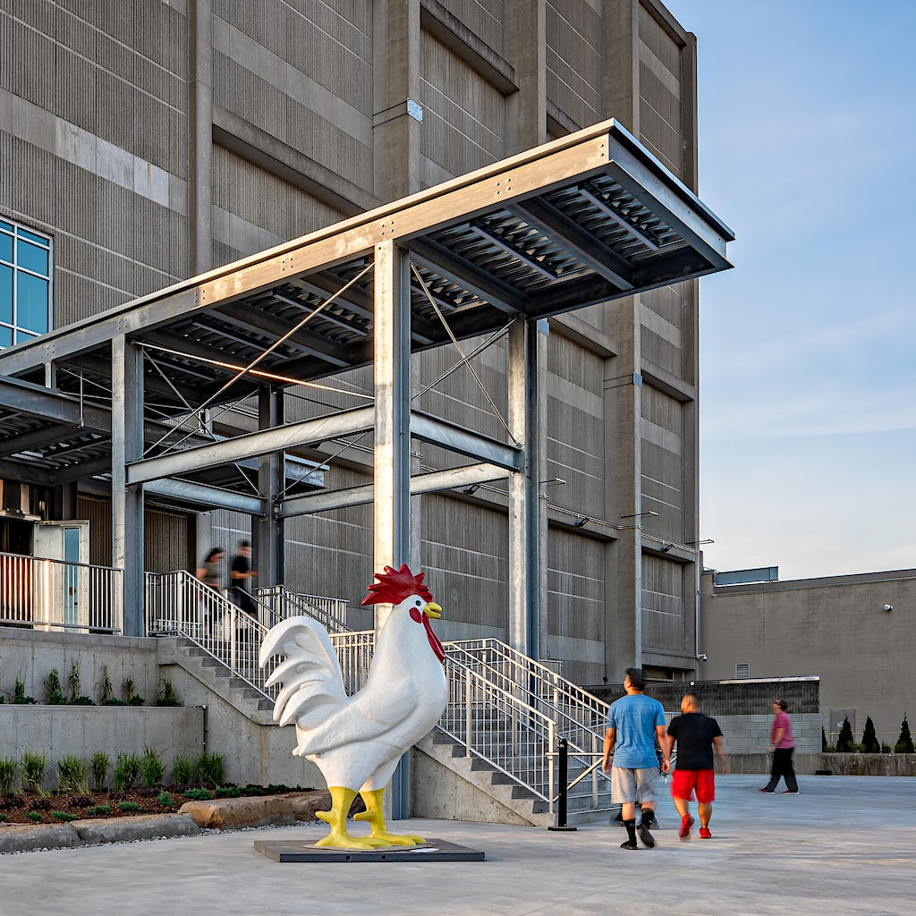 The rooster outside The Factory London Ontario on Grand Opening Day